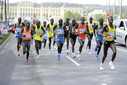 Runners in Vienna will pass many interesting tourist sights, including Schloss Schönbrunn. © www.PhotoRun.net