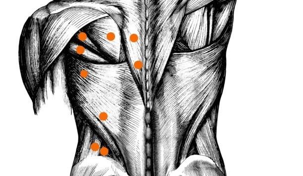Neuromuskuläre Therapie: Weit mehr als nur eine spezielle Massageform