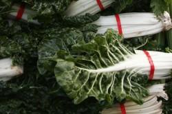 Bio-Lebensmittel müssen kein Vermögen kosten