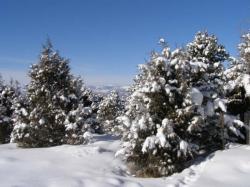 Skifahren und Snowboarden: Riskant und doch so lohnenswert!